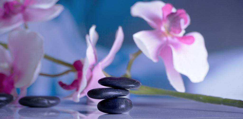 Whole Living, Rejuvenation & Wellness